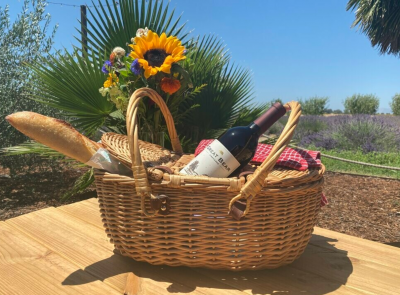 Weekend Wine Picnic at Great Bear Vineyards
