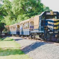 River Fox Old Vine Express Train