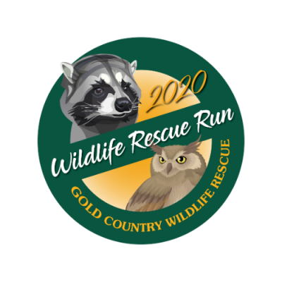 Wildlife Rescue Run