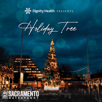 Dignity Health Holiday Tree