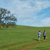 Deer Creek Hills Preserve Self-Guided Hikes