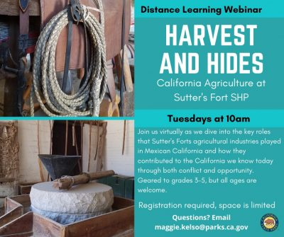 Harvest and Hides: Agriculture at Sutter's Fort