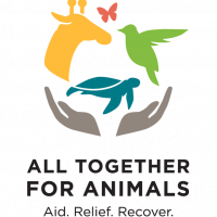 All Together for Animals Virtual Concert