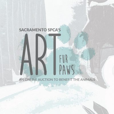 Art Fur Paws Online Art Auction