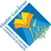 Webinar Get Sharp: Introduction to the Wonders of Cacti and Other Succulents