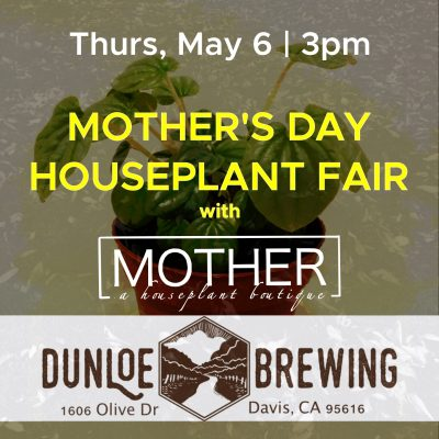 Just Before Mother's Day Houseplant Fair