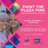 Paint the Plaza Pink